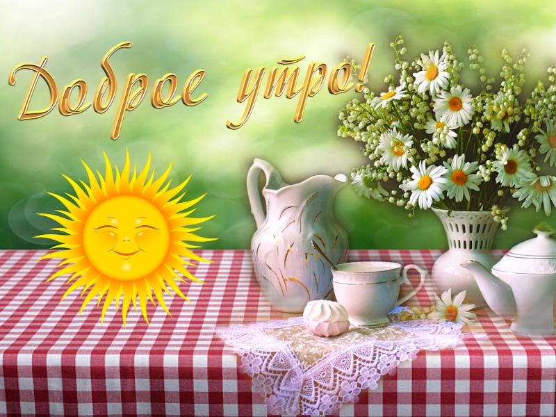 открытки с летним добрым утром с природой простых красивых