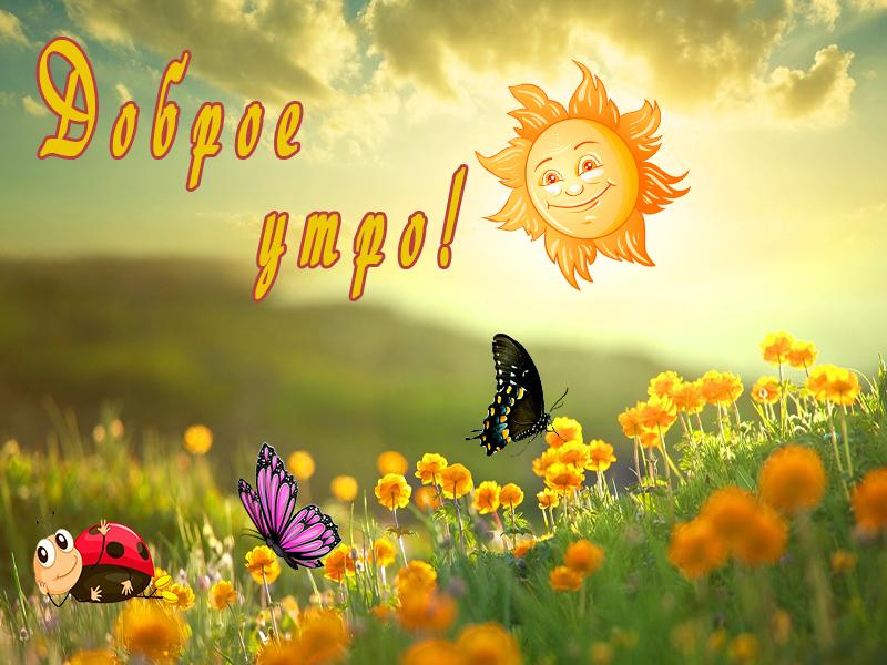 солнце днем картинки