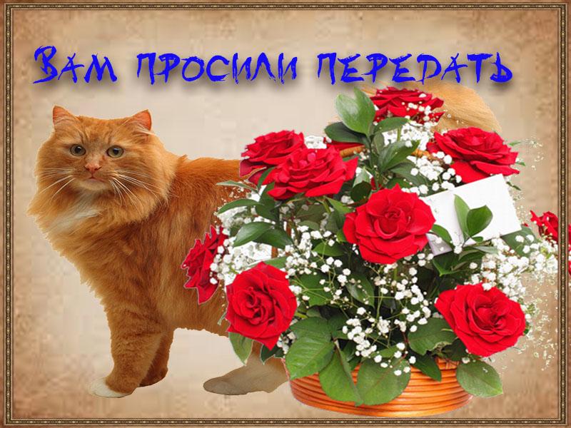 Послание с цветами