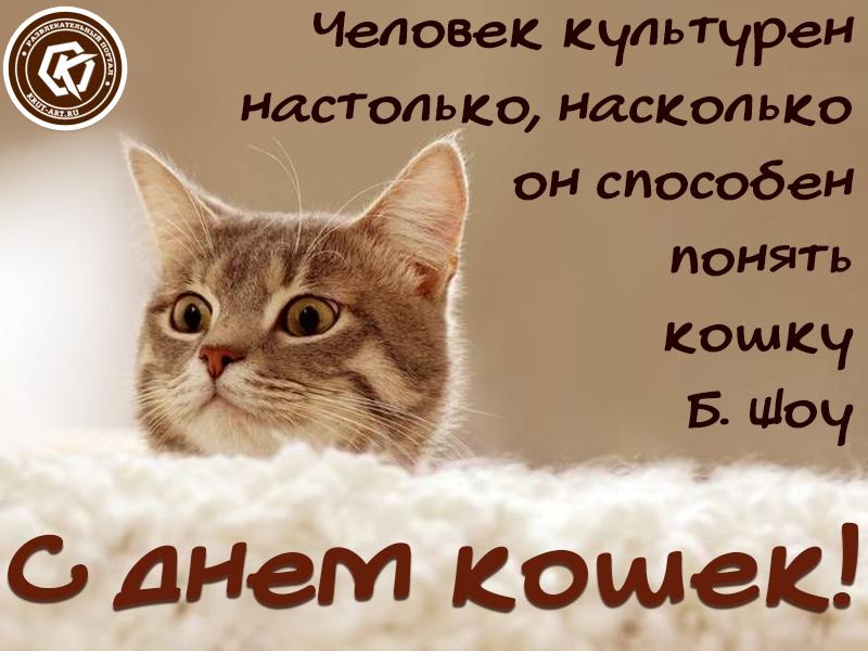 Открытка ко дню кошек