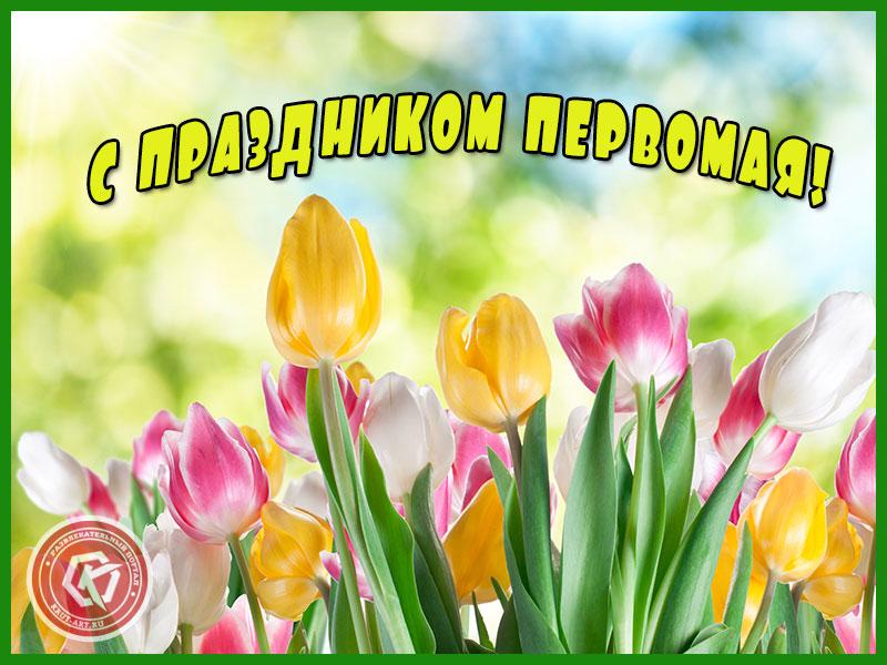 С праздником Первомая!