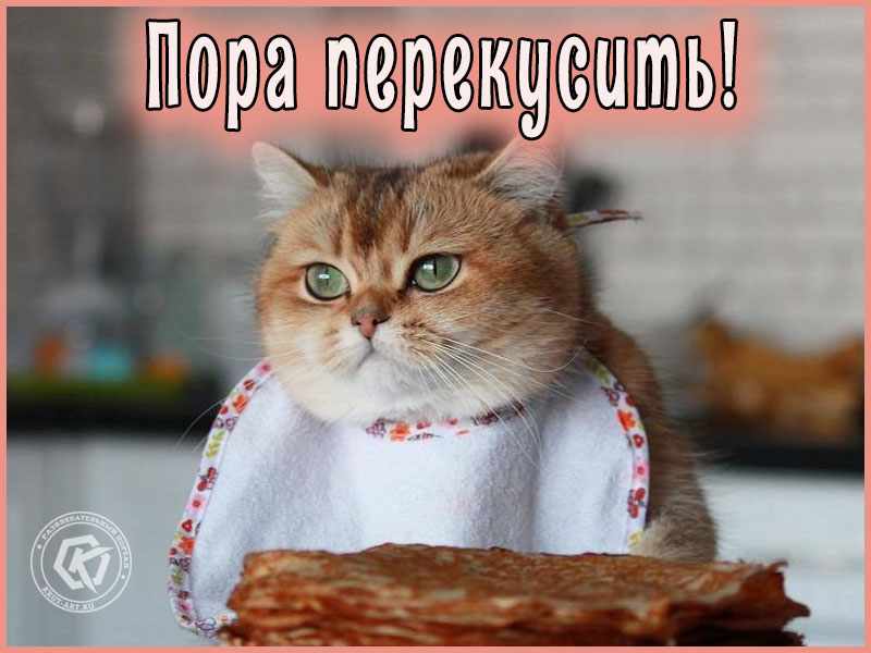 Пора перекусить!