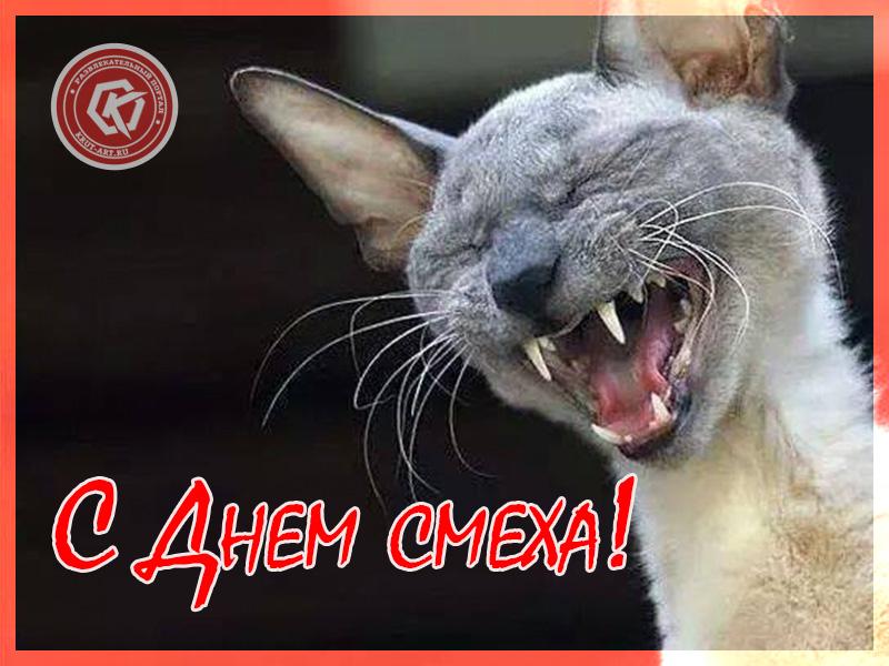 Смеющийся кот
