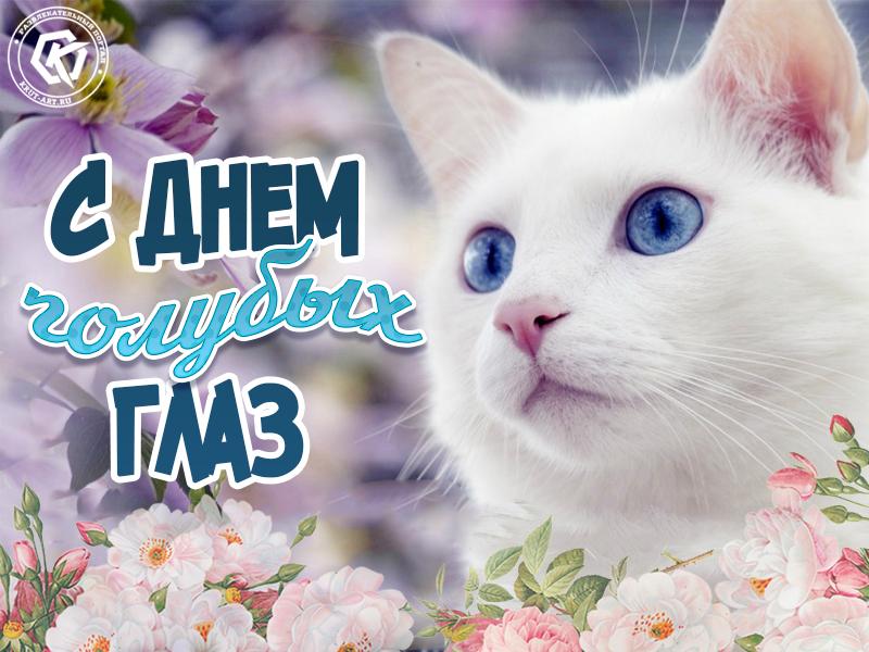 Поздравляю с днем голубых глаз
