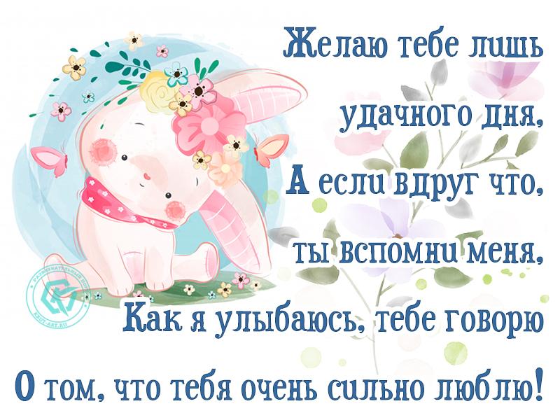 Люблю тебя и желаю удачного дня