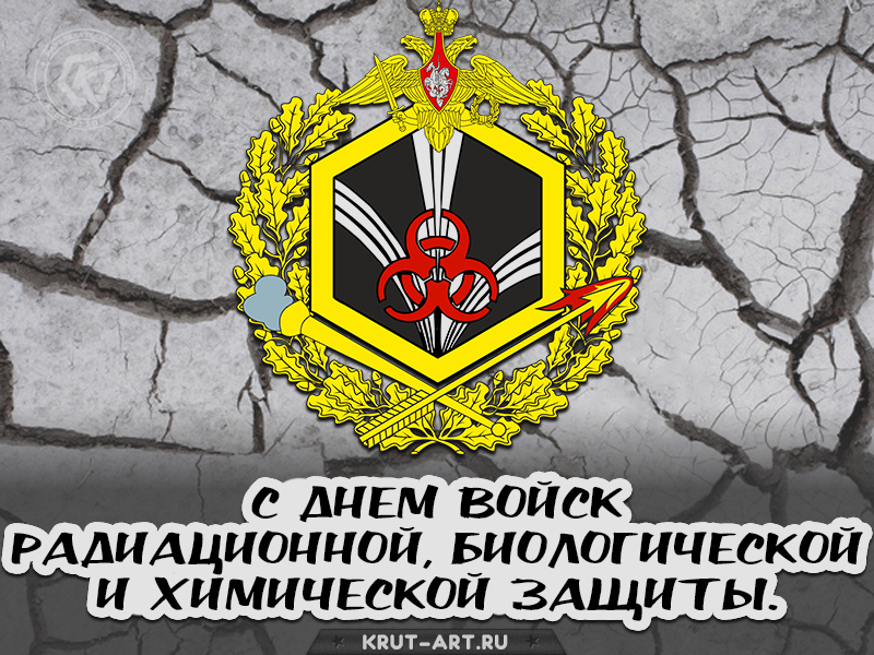 С днем войск радиационной, биологической и химической защиты