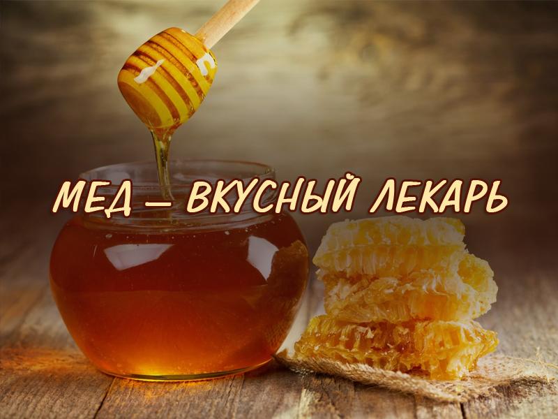 Мед – вкусный лекарь