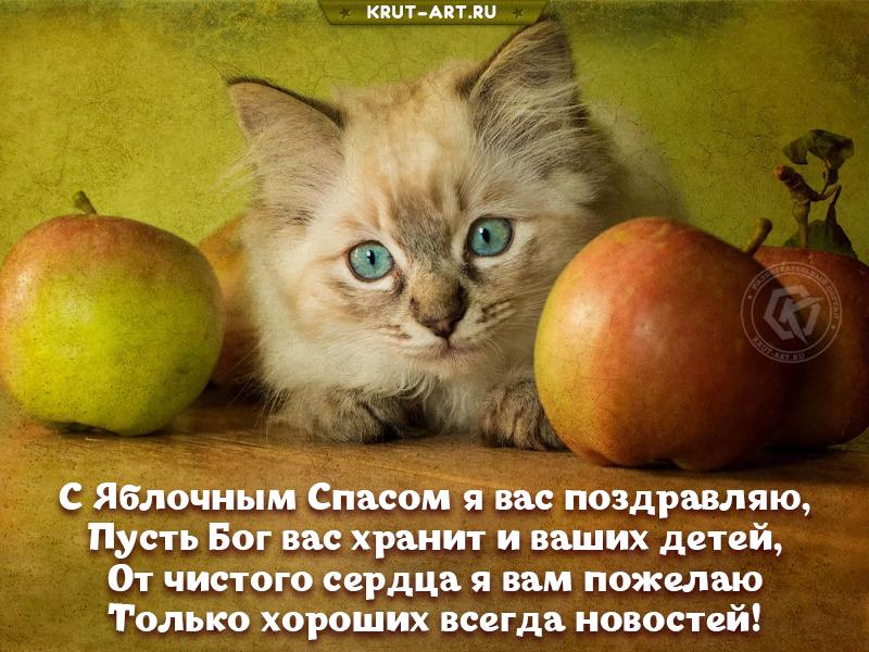 Красивая картинка яблочный спас