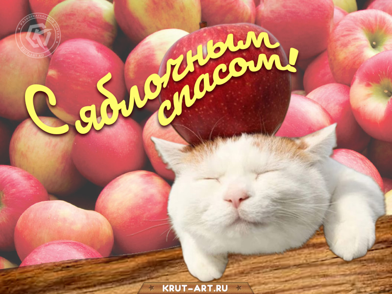 Смешная открытка яблочный спас