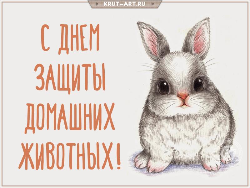 С днем домашних животных открытка