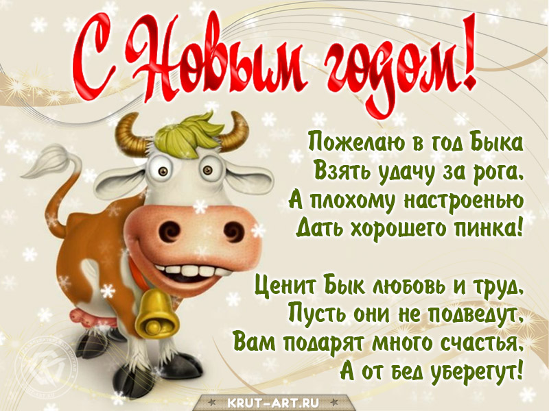Смешное поздравление с годом быка