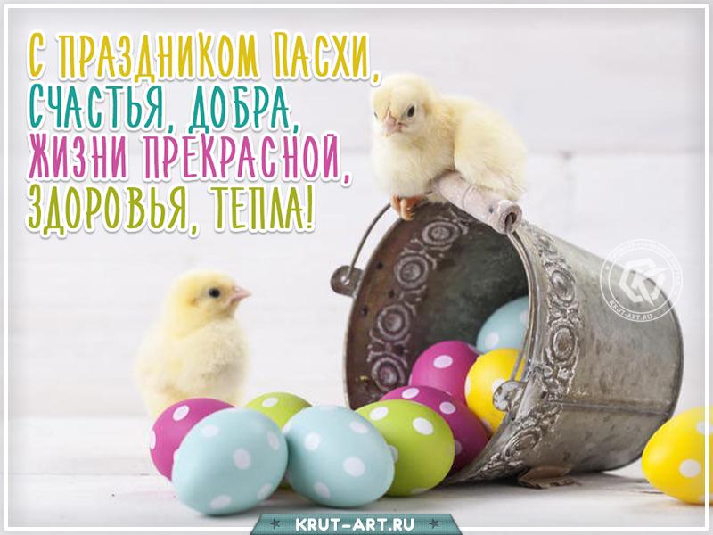 С праздником Пасхи прикольная картинка