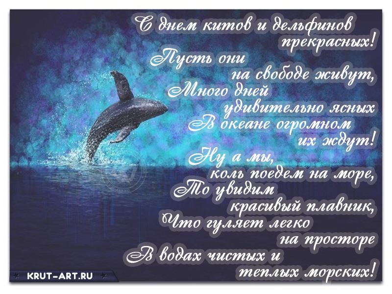 Красивая открытка с днем китов и дельфинов