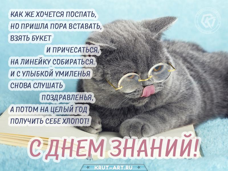 1 сентября смешная открытка